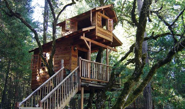 Дом в облаках: как построить домик на дереве