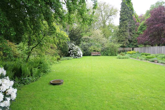 ГАЗОН: трава для газона, как посадить газон, устройство газона и уход за ним