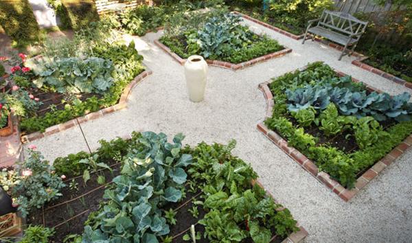 Городской овощной сад