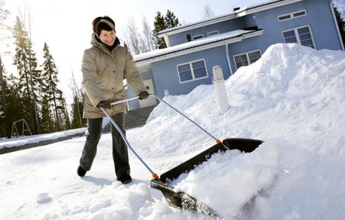 Что необходимо сделать на участке зимой