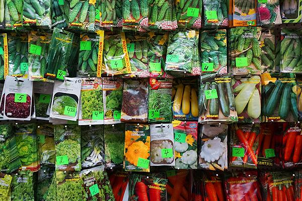 Что нужно знать, выбирая семена: особенности маркировки и высадки